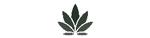CBD & Hemp Products | webelieve