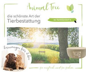 Animal Tree Cashback
