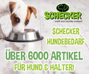 Schecker.de Cashback