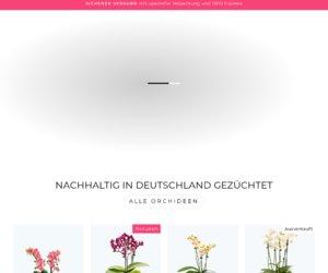 Orchideen Klusmann Cashback